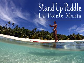 stand-up-paddle-640x480-18